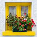 WIndow Flowerbox